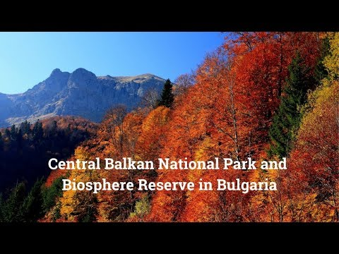 Central Balkan National Park and Biosphere Reserve