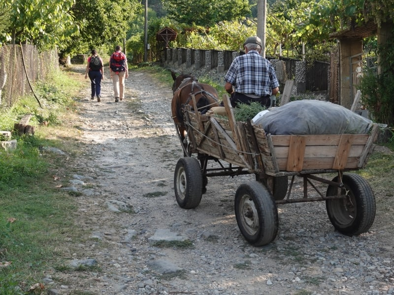Traditional Transport Device in Yavornitsa | Photo: Nature Experience Bulgaria