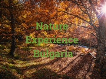 "Video cover of the video ""Nature Experience Bulgaria"""
