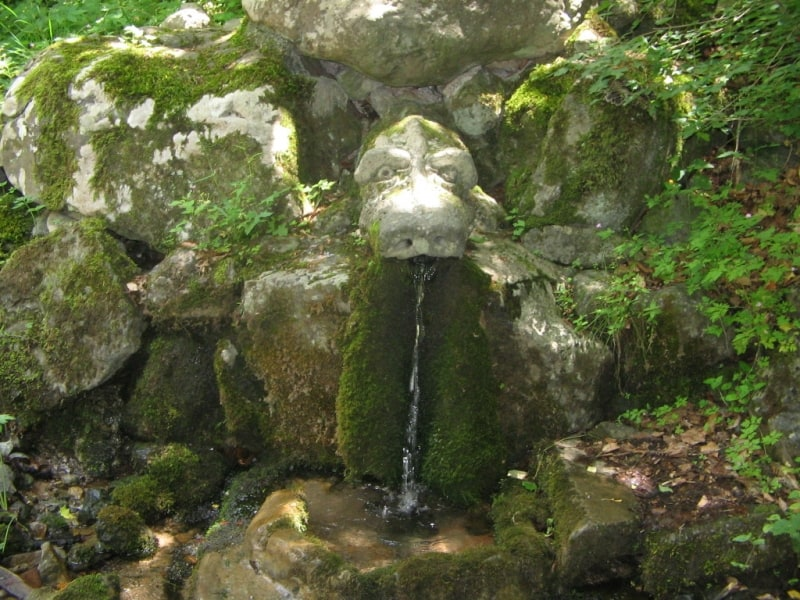 Spring Jivata voda (Living water) - photo: Vitosha Nature Park