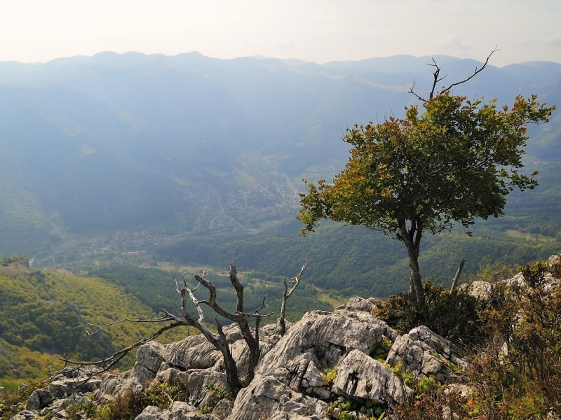 At the mountaintop- photo: Vrachanski Balkan Nature Park
