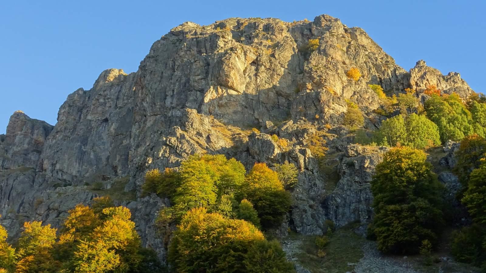 Dzhendema Reserve - Photo: Central Balkan National Park and Biosphere Reserve