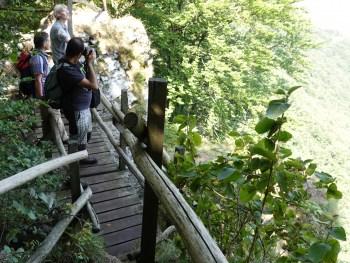 On top of Borov Kamak waterfall in Vrachanski Balkan Nature Park Photo: Terolog