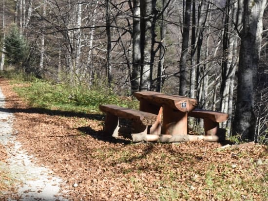 Rest area - Photo: Central Balkan National Park/Stoyan Hristov