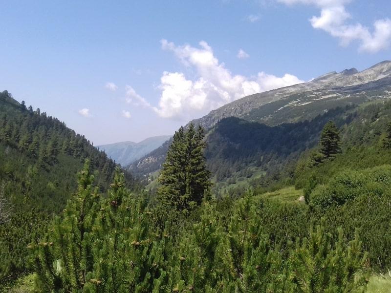 View from Kobilino Braniste - Photo: Rila Monastery Park Directorate