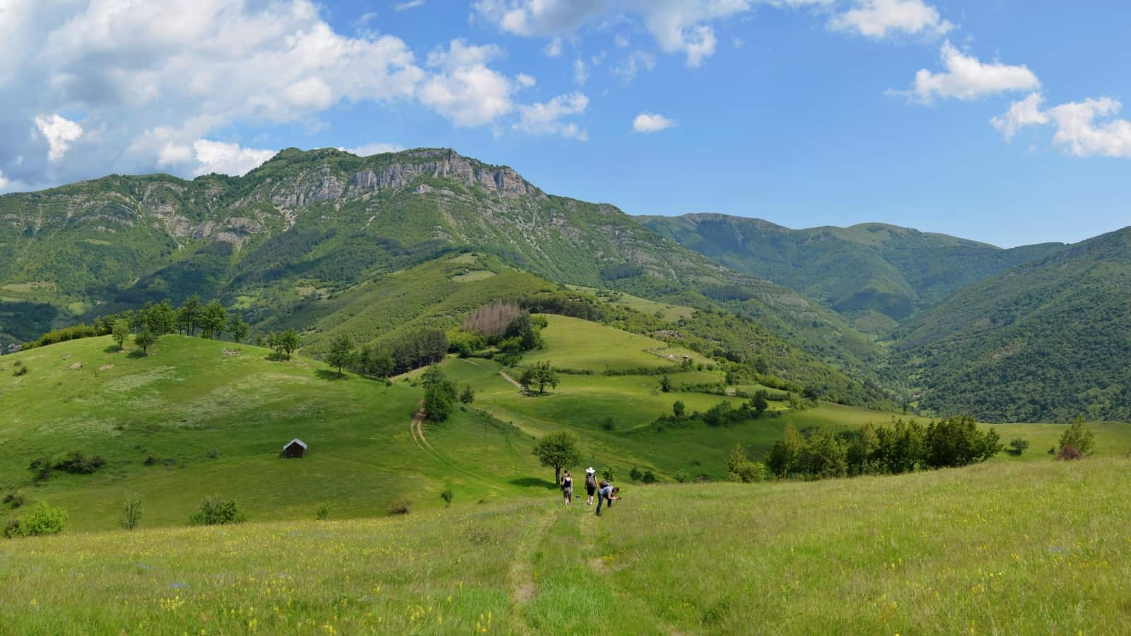 Meadows with orchids - Panorama view of Vrachanski Balkan Nature Park- photo: Vrachanski Balkan Nature Park/Krasimir Lakovski