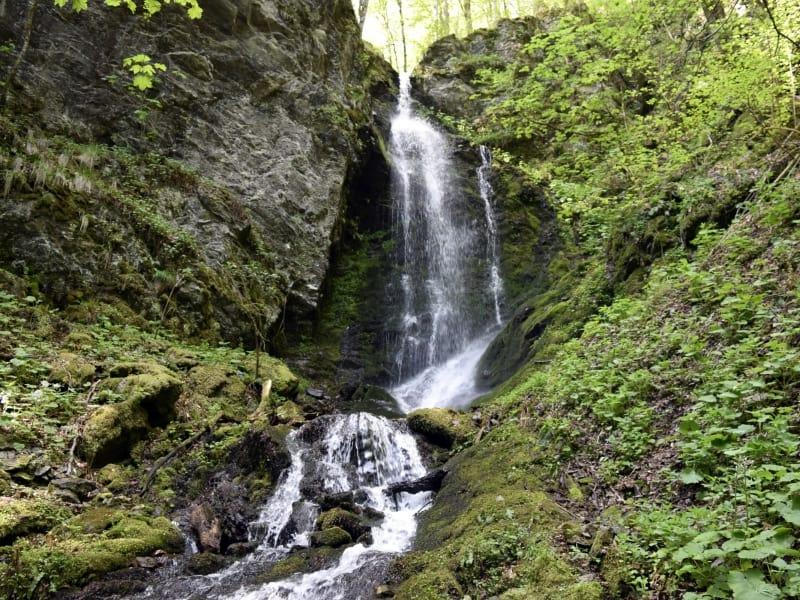 Waterfall - photo: Central Balkan National Park