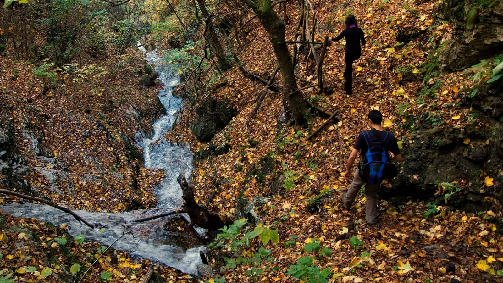 Borov kamak trail - photo: Vrachanski Balkan Nature Park
