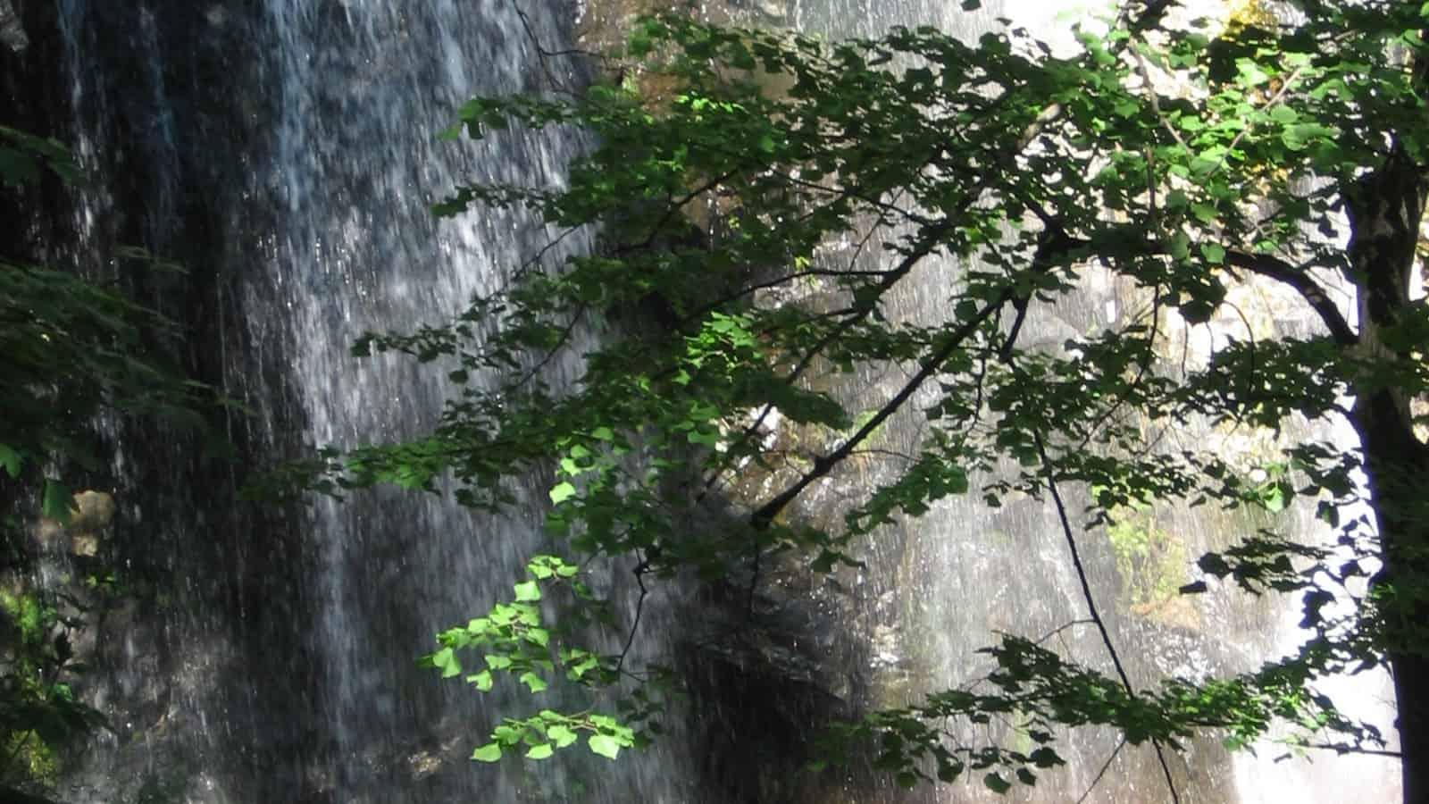 Boyana waterfall - photo: Vitosha Nature Park