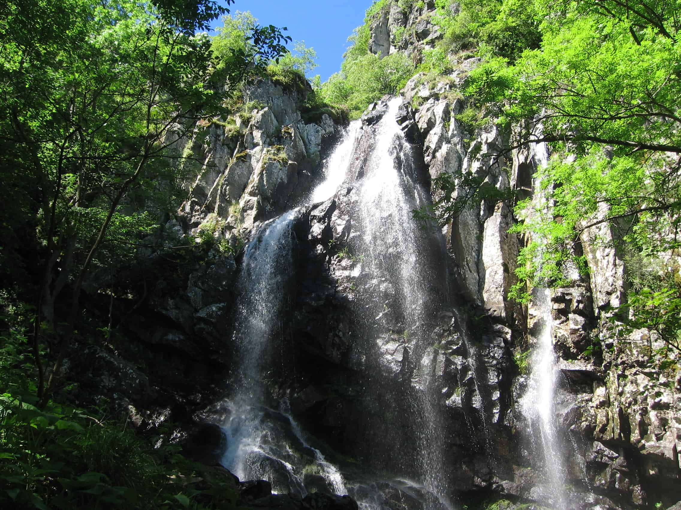 Boyana waterfall - photo: Vitosha Nature Park