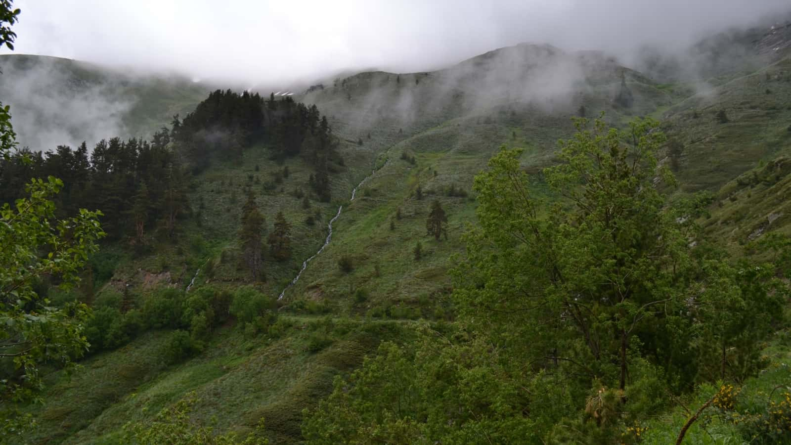 Ilina River - Photo: Rila Monastery Park Directorate