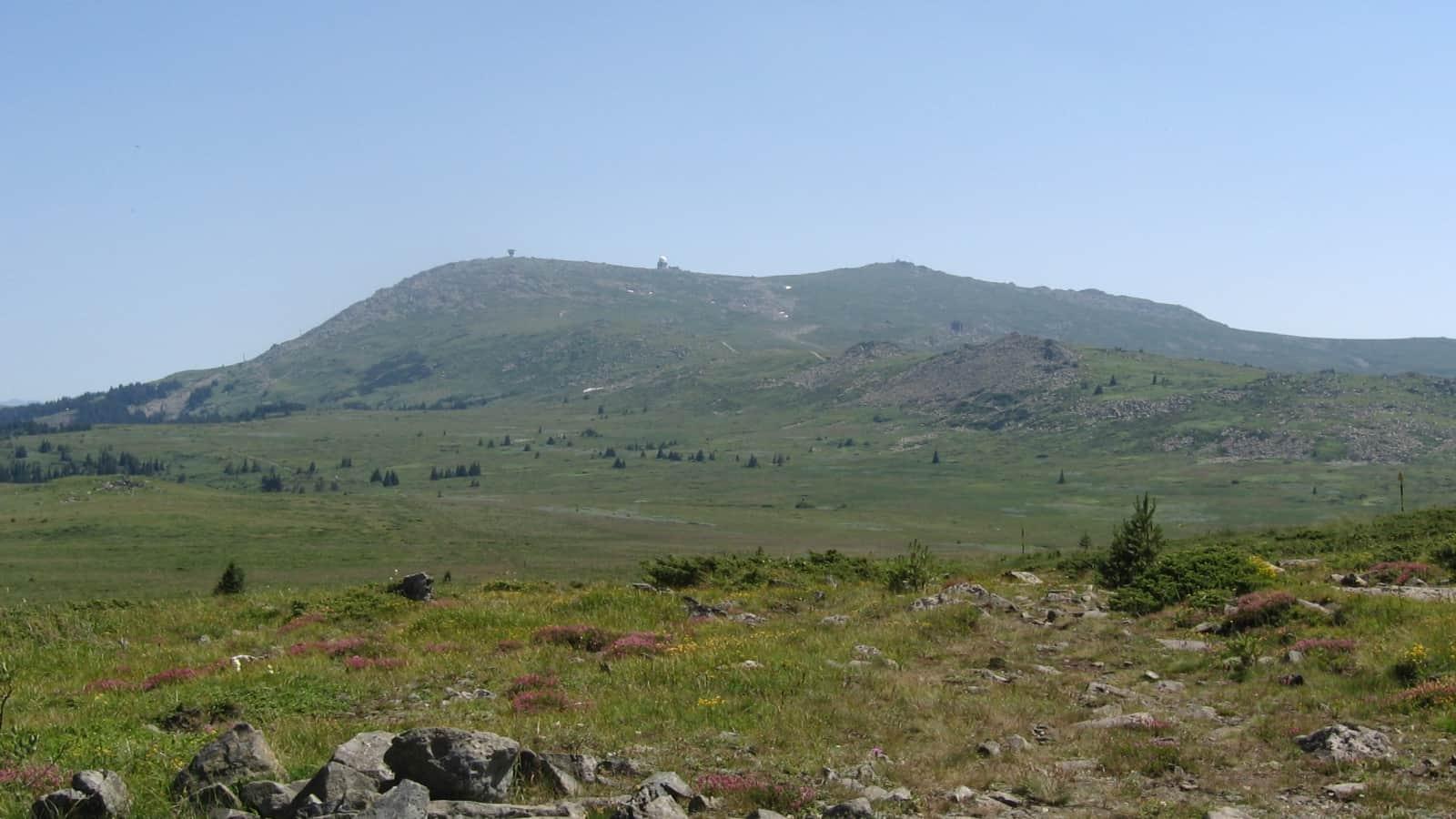 Landscape - photo: Vitosha Nature Park