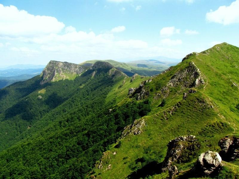 Kozya Stena Reserve in Central Balkan National Park - photo: Sergey Aleksandrov