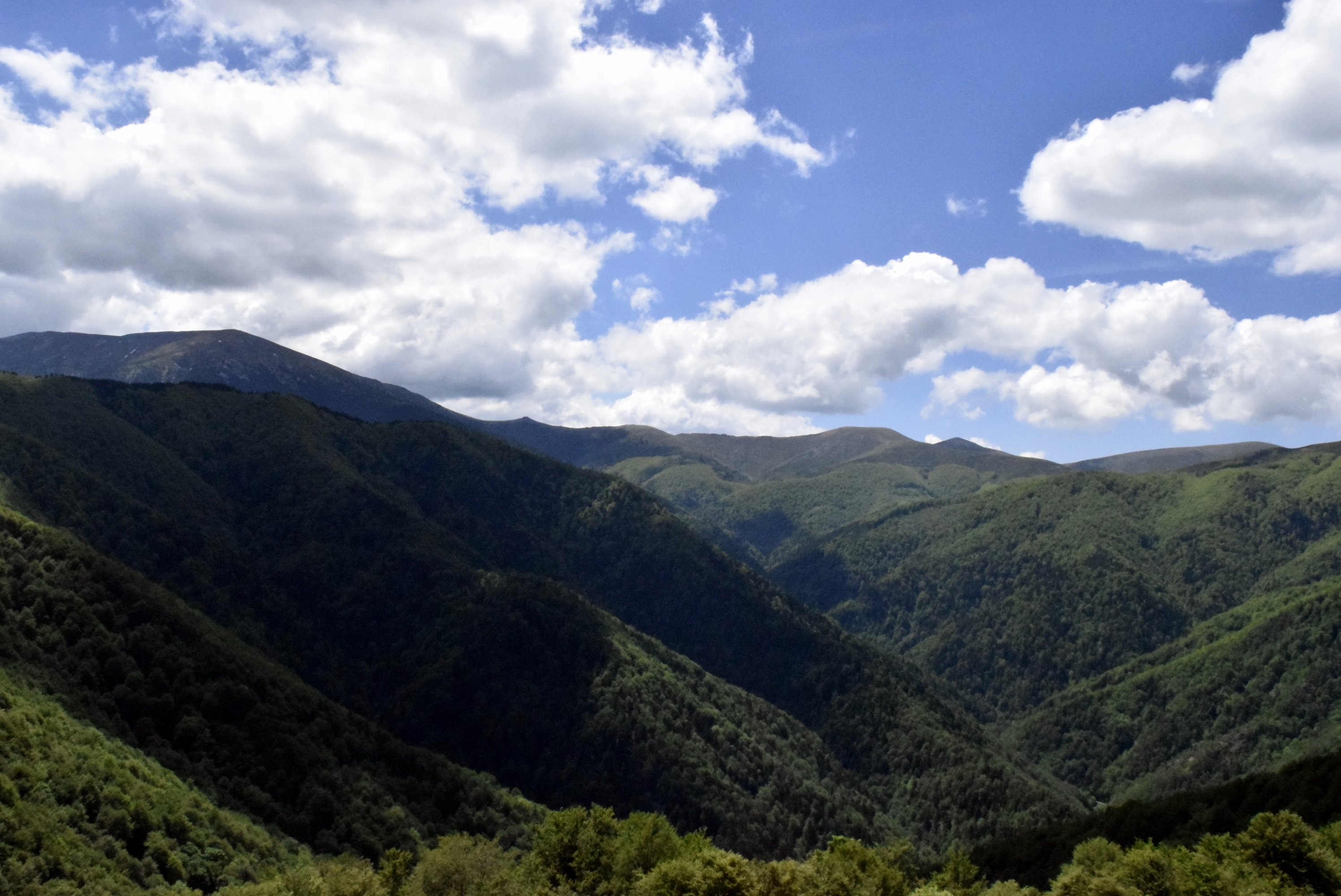 Photo: Scenic view - Central Balkan National Park