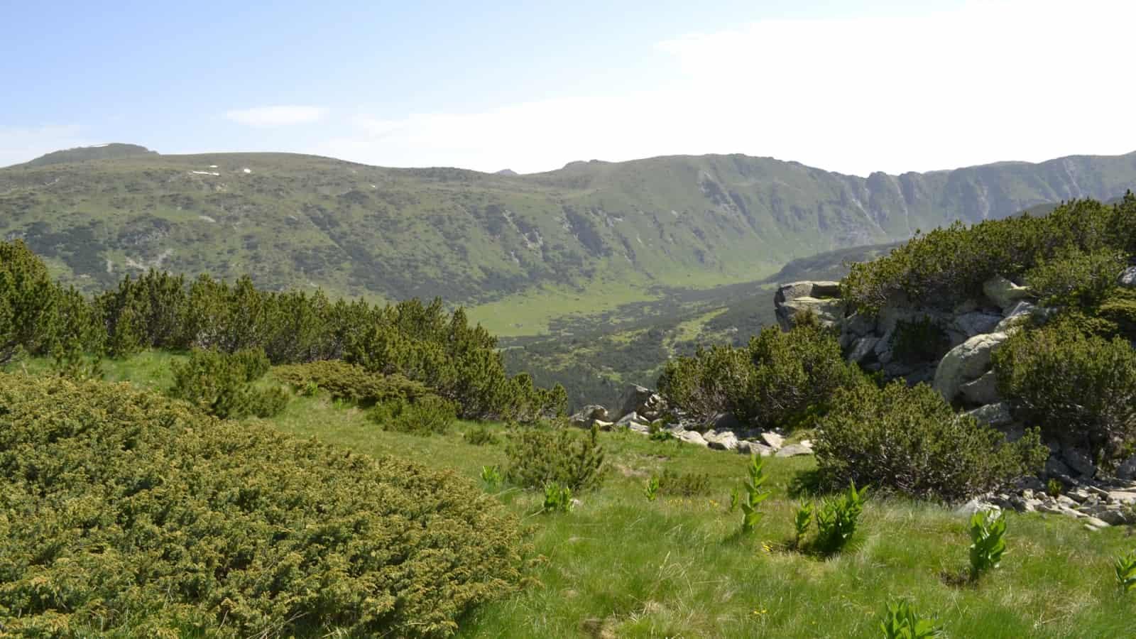 Scenic view - Photo: Rila Monastery Park Directorate