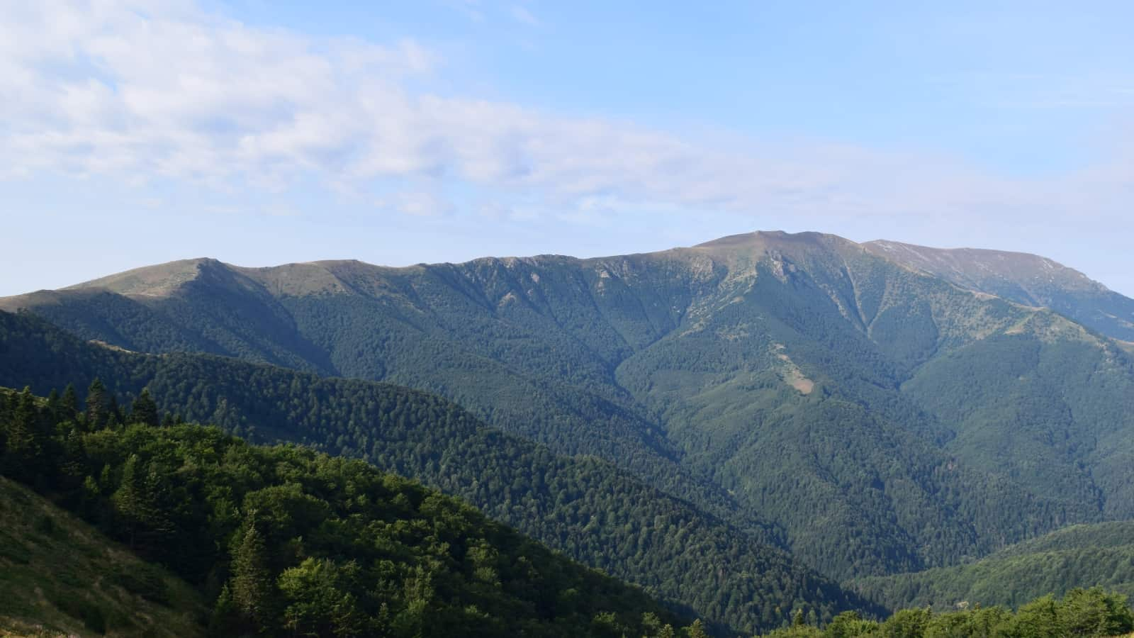 Scenic view from the path - Photo: Central Balkan National Park/Stoyan Hristov