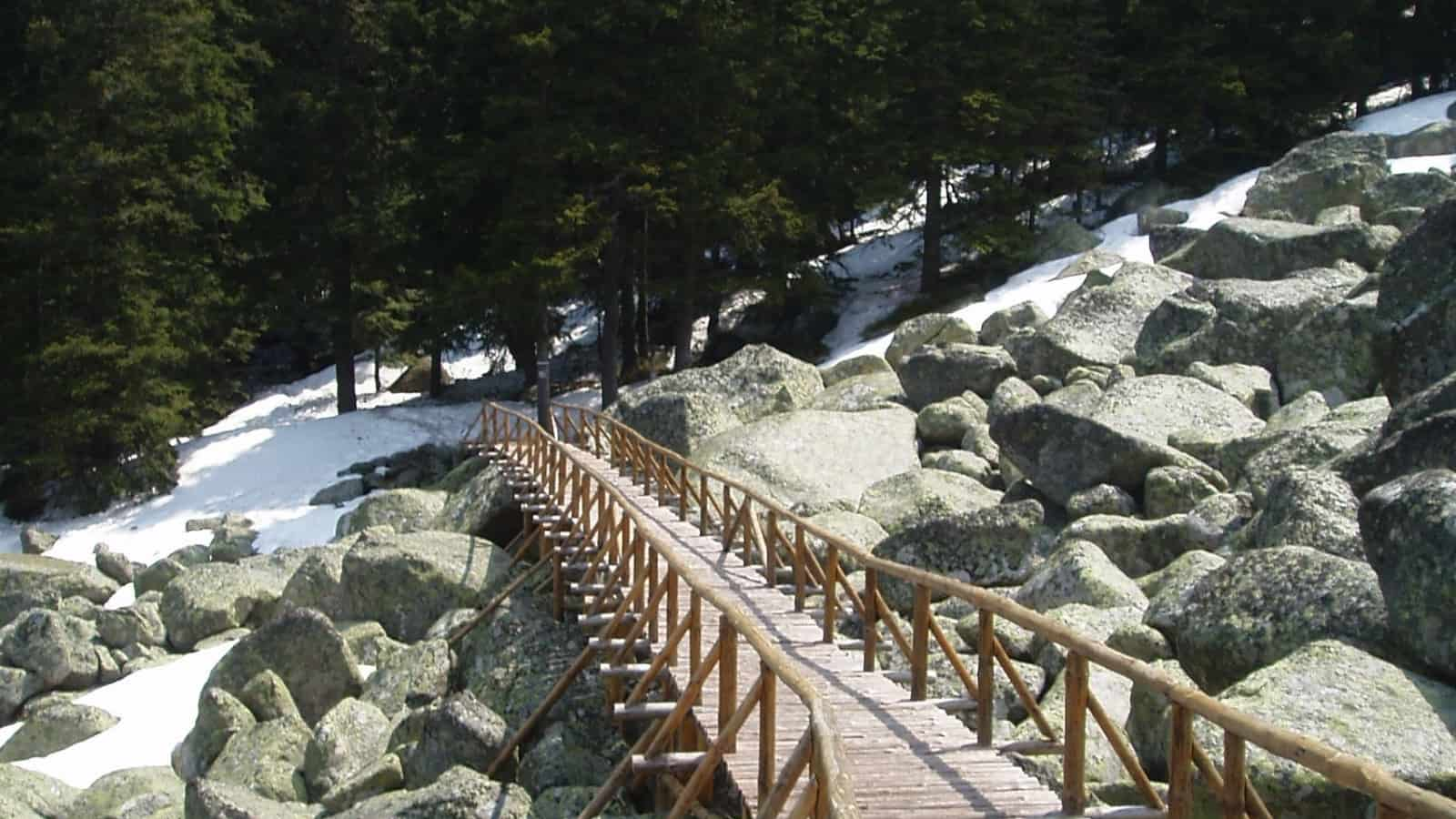 Winter - photo: Vitosha Nature Park